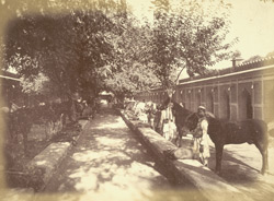[View of the] Stables [Rampur]